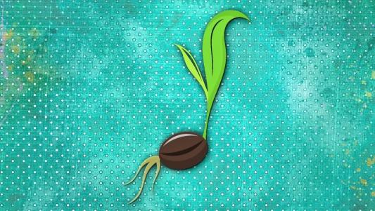 sueños de semilla